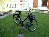 Lord Authentic - Solex avant pr